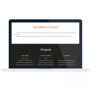 website-development-company-in-Pune